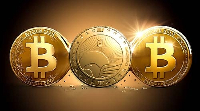 The Evolution Of Cryptocurrency