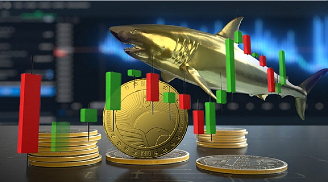 New whales Are Entering The GIFX Market
